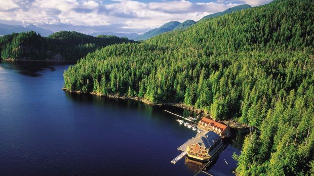 King Pacific Lodge  Princess Royal Island, Canada