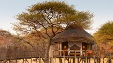 Onguma Tree Top Camp  Etosha National Park, Namibia