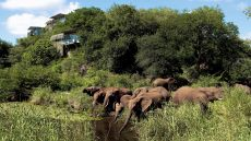 Singita Lebombo Lodge — Limpopo, South Africa