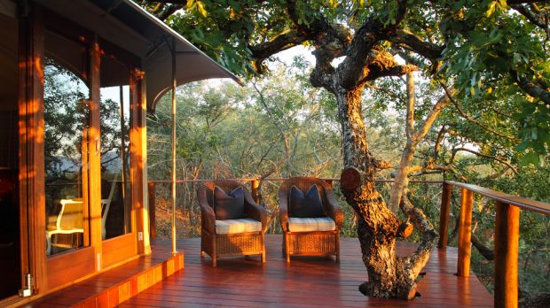 Thanda Private Game Reserve  Thanda Private Game Reserve, South Africa