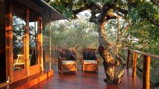 Thanda Private Game Reserve �