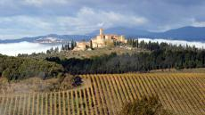 Castello Banfi Il Borgo  Montalcino, Italy