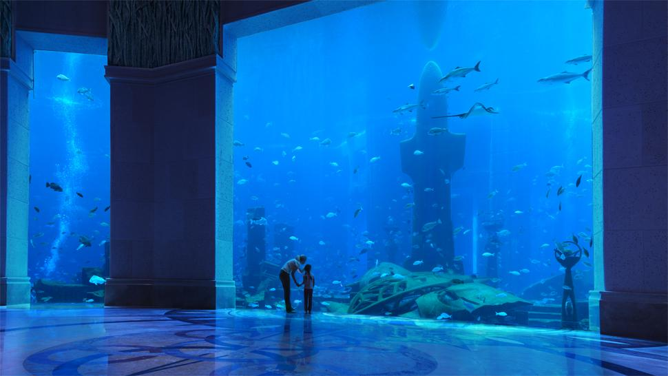 Atlantis The Palm, Dubai, Dubai, United Arab Emirates